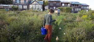 EcoVillage in Ithaca, N.Y. is a large co-housing, independent living community with an unusually strong commitment to living green