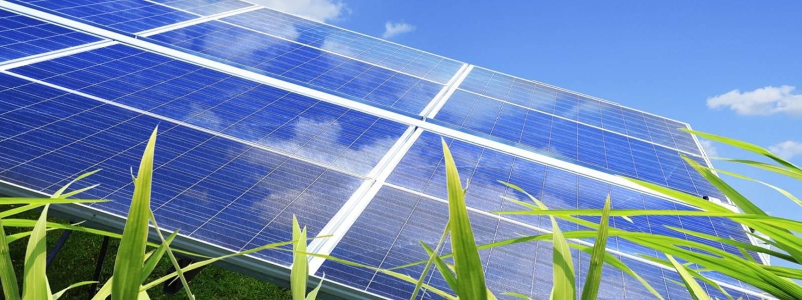 SolarAmendment4Passes